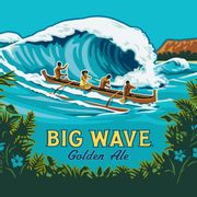 Chopp Kona Big Wave 30L